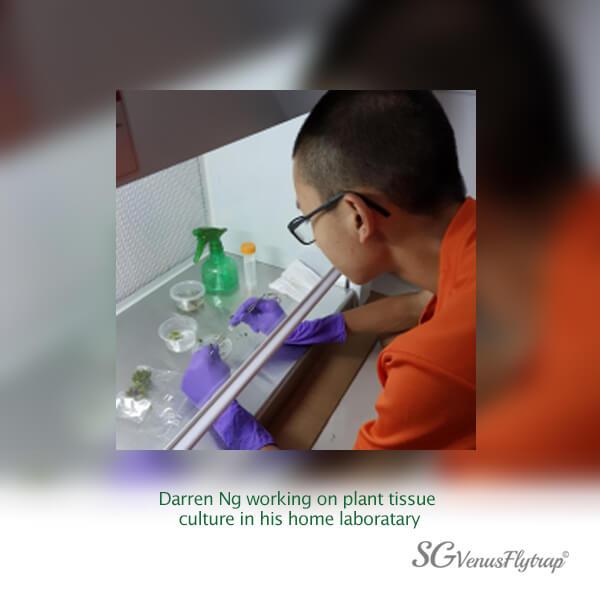 Darren Ng Lab